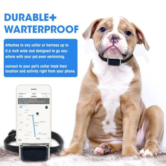 Mini Pet Dog or Cat GPS Tracker waterproof, free lifetime real time tracking without limitation, cat tracking finder, dog wirless locator